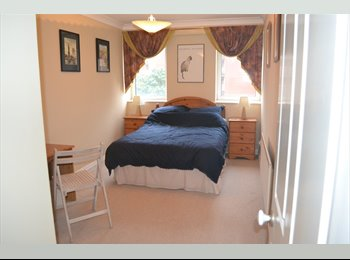 Large Modern and Furnished Room, Bournemouth