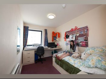 EasyRoommate UK - BATH SPA UNIVERSITY WATERSIDE COURT ROOM FOR RENT!!!! (Bath Spa University students only) - Bath, Bath and NE Somerset - £564 pcm