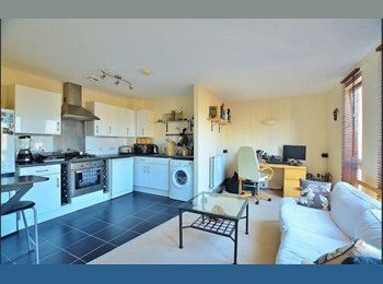 SHORT LET FROM DECEMBER TO FEBRUARY IN A FANTASTIC 1 BED...