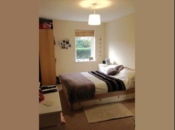 EasyRoommate UK - En Suite Double Room  - Fenny Stratford, Milton Keynes - £500 pcm