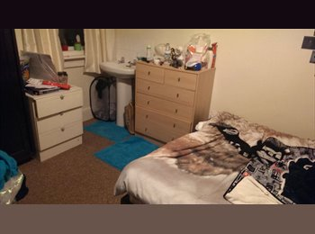 EasyRoommate UK - Double Room in Oldfield Park Available, £97pppw ! - Bath, Bath and NE Somerset - £97 pcm