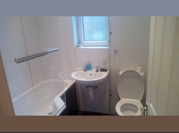EasyRoommate UK - Luminous Large Double Bedroom Available Now CITY CENTRE - Edinburgh Centre, Edinburgh - £495 pcm