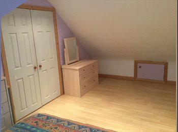 EasyRoommate UK - Room to rent  - Fareham, Fareham and Gosport - £400 pcm