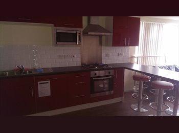 EasyRoommate UK - Student room near UoL - Vauxhall, Liverpool - £520 pcm
