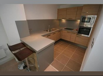 One room to rent in Cypress Place, Green Quarter