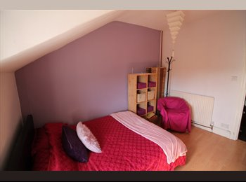 EasyRoommate UK - Bright Double Room,   - Penylan, Cardiff - £450 pcm