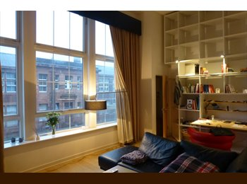 Tenant wanted! 1 bedroom mezzanine apartment in Laurieston...
