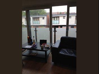 EasyRoommate UK - Cool room to rent immediately, 5 min from Southampton uni - Portswood, Southampton - £400 pcm