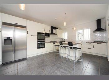EasyRoommate UK - Large 6 bedroom luxury professional house share - Boscombe, Bournemouth - £650 pcm