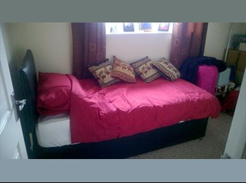 Double sized room to rent in lovely two-bed semi in Barton...