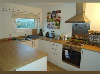 EasyRoommate UK - Lovely 2 bdrm furnished new flat right near City Centre - need a roomie! - Bristol City Centre, Bristol - £437 pcm