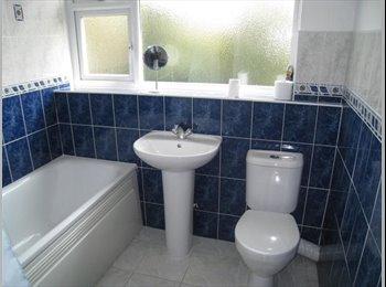 EasyRoommate UK - Flatmate wanted! Harborne- perfect student location!  - Harborne, Birmingham - £325 pcm