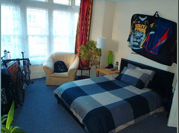 Large Double Room to Let in a Professional House Share