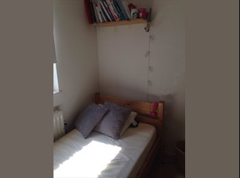 Single room in great shared house in LDN Euston!