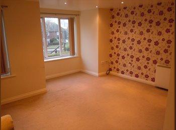 EasyRoommate UK - MODERN 2 BEDROOM FLAT  - Arnold, Nottingham - £495 pcm