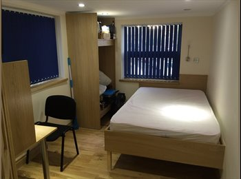 Great Ensuite Room £79/month Great Location and Room!