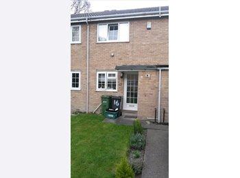 EasyRoommate UK - Single room to rent  - Woodthorpe, York - £450 pcm