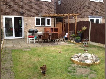 EasyRoommate UK - Double bed in large house for young adult - Basildon, Basildon - £400 pcm