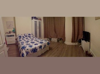 HUGE DOUBLE ROOM - looking for a young professional to join...