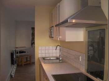 EasyRoommate UK - VERY NICE BED SIT - Havering, London - £550 pcm