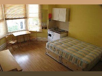 EasyRoommate UK - SW8 Double Semi Studio Ideally located close to Tube - South Lambeth, London - £550 pcm