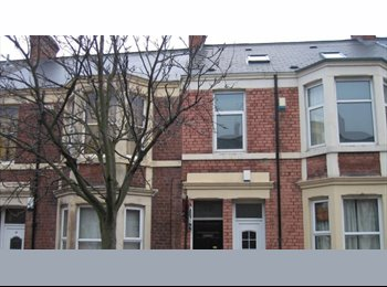 EasyRoommate UK - Homely house, we need one more - Newcastle City Centre, Newcastle upon Tyne - £72 pcm