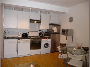 EasyRoommate UK - EXCELLENT CENTRAL LOCATION ZONE 2 / GREAT FLATMATES - Stockwell, London - £789 pcm