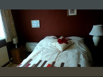 EasyRoommate UK - lovely large double room - Warminster, West Wiltshire - £360 pcm
