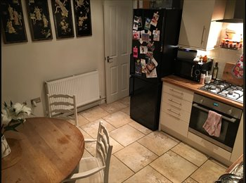 EasyRoommate UK - Huge room available in lovely Southville house share  - Bedminster, Bristol - £430 pcm
