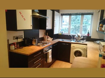 EasyRoommate UK - Room to Rent  - Hulme, Manchester - £411 pcm