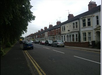 EasyRoommate UK - Single Room for Rent  - St James, Northampton - £360 pcm