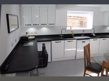 EasyRoommate UK - City Centre Flat 1st Months Rent free! Contract until June 2016! - Liverpool Centre, Liverpool - £520 pcm