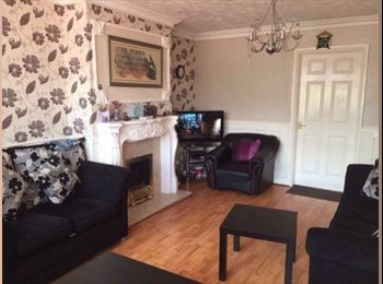 room to let in family home