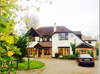 EasyRoommate UK - **Brand New Executive Detached Houseshare** - Bedford, Bedford - £550 pcm
