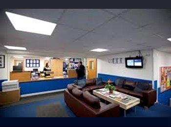 EasyRoommate UK - Southampton Student Accommodation AVAILABLE   - Northam, Southampton - £520 pcm