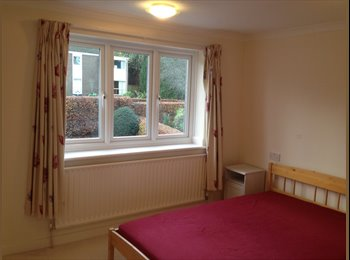 EasyRoommate UK - Detached House in Ponteland - Suit Professional - Darras Hall, Newcastle upon Tyne - £400 pcm