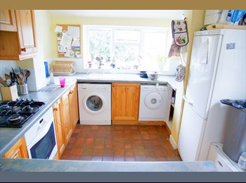 EasyRoommate UK - Beautiful single bedroom in a friendly house - Bath, Bath and NE Somerset - £330 pcm