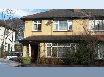 EasyRoommate UK - Double room , Woodhouse (LS6) - Woodhouse, Leeds - £260 pcm