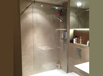 EN SUITE LARGE DOUBLE ROOM IN CENTRAL LONDON ALL INCL