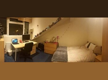 EasyRoommate UK - Double room to rent in Hyde Park £93 P/W Bills included - Woodhouse, Leeds - £324 pcm