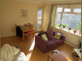 Large Double room in Spacious flat - Twickenham