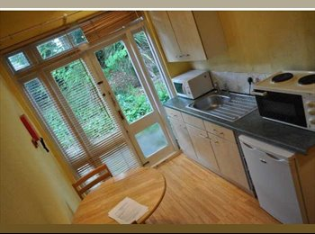 Great Double Studio Flat With Private Garden