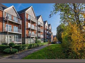 EasyRoommate UK - Big Double Room - Fenny Stratford, Milton Keynes - £412 pcm