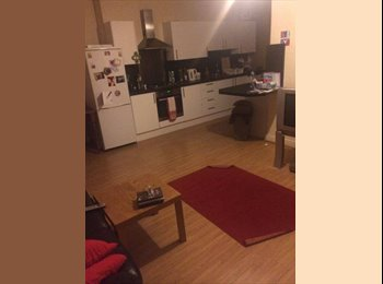 EasyRoommate UK - Spacious Double Room to Let  - Glasgow Centre, Glasgow - £400 pcm