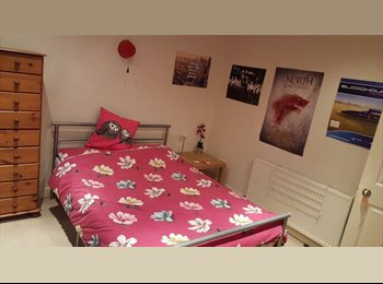EasyRoommate UK - Double room available now in student house, S10, Broomhill - Broomhill, Sheffield - £342 pcm