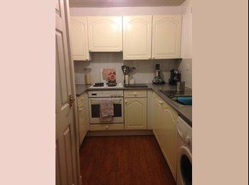 EasyRoommate UK -  Small Double room in trendy De Beauvoir (N1) - Islington, London - £600 pcm