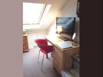 EasyRoommate UK - 1 double room available in Jesmond house - Jesmond, Newcastle upon Tyne - £372 pcm