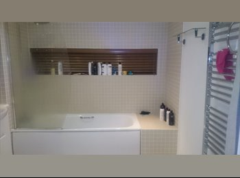EasyRoommate UK - Beautiful flat with a terrace  - Vauxhall, Liverpool - £600 pcm