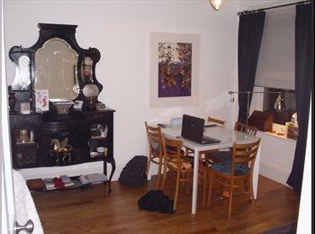 EasyRoommate UK - Beautiul room near the Village - Walthamstow, London - £625 pcm