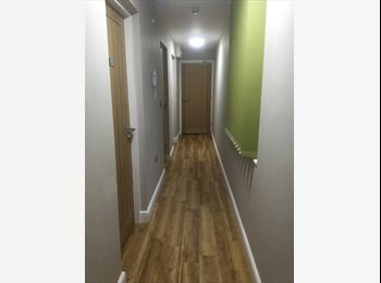 EasyRoommate UK - Student - double en-suit room - Chester - Chester, Chester - £574 pcm